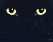 Cat Eyes Digital Art - C6 Oliver by Torie Tiffany