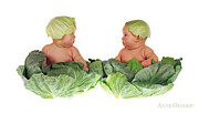 Down Photo Posters - Cabbage Kids Poster by Anne Geddes