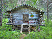 Rustic Cabin Posters - Cabin in Lapland Forest Poster by Merja Waters