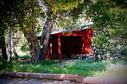 Cabin Wall Prints - Cabin In The Canyon Print by Jeanne Geidel-Neal