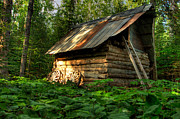 Dell Photo Acrylic Prints - Cabin in the Woods Acrylic Print by Jakub Sisak