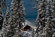 Snowed Trees Photo Metal Prints - Cabin In The Woods Metal Print by Mitch Shindelbower