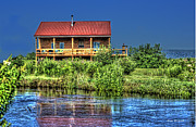 Little Cabin Photos - Cabin on Little Blackwater River by Dan Friend