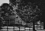 Old Cabins Prints - Cabin Scene Print by Eva Thomas