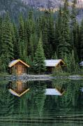 Log Cabins Art - Cabins In Yoho National Park by Ron Watts