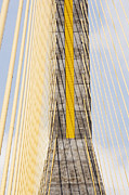 Cables And Tower Of Cable Stay Bridge Print by Jeremy Woodhouse