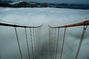 Golden Gate National Recreation Area Photos - Cables Of The Golden Gate Bridge by Randy Olson