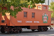 Old Caboose Photos - Caboose by Daryl Macintyre