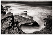 Cabrillo Framed Prints - Cabrillo Tide Pool Framed Print by Tanya Harrison