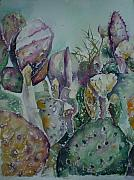 Bloom Painting Originals - Cacti in Bloom II by Aleksandra Buha