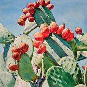 Cactus Paintings - Cactus Apples by Kathleen Ballard