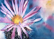 Arizona Artist Originals - Cactus Flower by Ellyn Solper