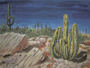 Surrealism Pastels - Cactus by Jim Barber Hove