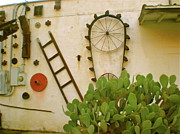 Feed Mill Photo Metal Prints - Cactus Metal Print by Sheep McTavish