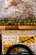 Fez Photos - Cactus Stall  with graffiti by Sami Sarkis