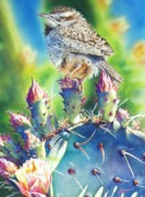 Wren Painting Framed Prints - Cactus Wren Framed Print by Greg Halom