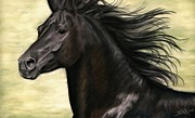 Black Horse Pastels Prints - Cadence Print by Sheri Gordon