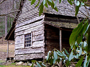 Tennessee Historic Site Photo Posters - Cades Cove Cabin Poster by Jim Finch
