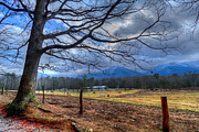 Cades Cove Lane Print by Debra and Dave Vanderlaan