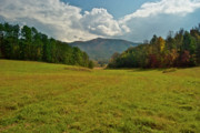Smokey Mountain Posters - Cades Cove Pasture Poster by Michael Peychich