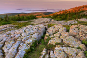 Lichen Photos Posters - Cadillac Mountain Sunrise - Acadia National Park Poster by Thomas Schoeller