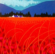 Poppy Painting Framed Prints - Cadmium Landscape Framed Print by John  Nolan