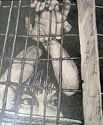 Cage Drawings - Caged by Jean Haynes