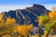 Badlands Photos - Caineville Mesa in Fall Colors by Utah Images