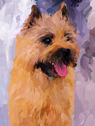 Cairn Terrier Prints - Cairn Terrier Print by Jai Johnson