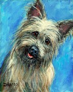 Cairn Terrier Posters - Cairn Terrier Smiling on Blue Poster by Dottie Dracos