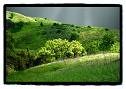 Storm Clouds Pyrography Posters - Calabasas Meadow after the storm Poster by Karl Preston