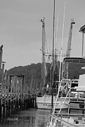 Shrimp Boat Prints - Calabash Shrimper in black and white Print by Suzanne Gaff