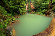 Natural Pool Prints - Caldeira Velha - Azores Print by Gaspar Avila