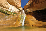 Adam Jewell - Calf Creek Falls