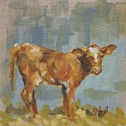 Donna Shortt Originals - Calf by Donna Shortt