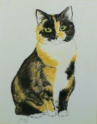 Janet Poirier - Calico Cat