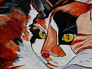 Kitty Painting Posters - Calico Close up of Face Poster by Patti Schermerhorn