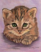 Furry Pastels - Calico Kitten by Dorothy  Oakman