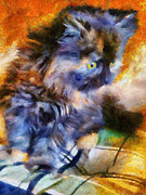 Contemporary Oil Paintings - Calico Kitten by Jai Johnson