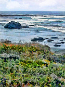 Cambria Paintings - California Central Coast Near San Simeon by Elaine Plesser