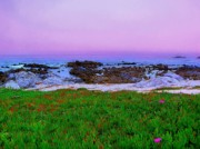 Purple Sky Posters - California Coast Poster by Jen White