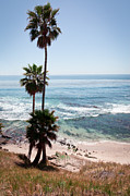 Laguna Beach Posters - California Coastline Photo Poster by Paul Velgos