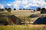 Ranch Photo Prints - California Farmland Print by Peter Tellone