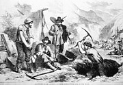 Gold Rush Prints - California Gold Rush, 1856 Print by Granger