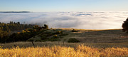 Blanket Framed Prints - California hills in fog Framed Print by Matt Tilghman