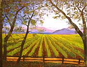 Vineyard Landscape Posters - California NAPA Valley Vineyard Poster by Connie Tom