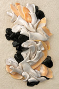 Shells Mixed Media - California Opus 22 by Carol Zee