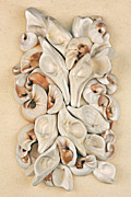 Shells Mixed Media - California Opus 24 by Carol Zee