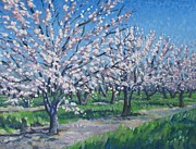 Modesto Paintings - California Orchard by Vanessa Hadady BFA MA