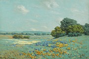 Poppy Field Paintings - California Poppy Field by Pg Reproductions